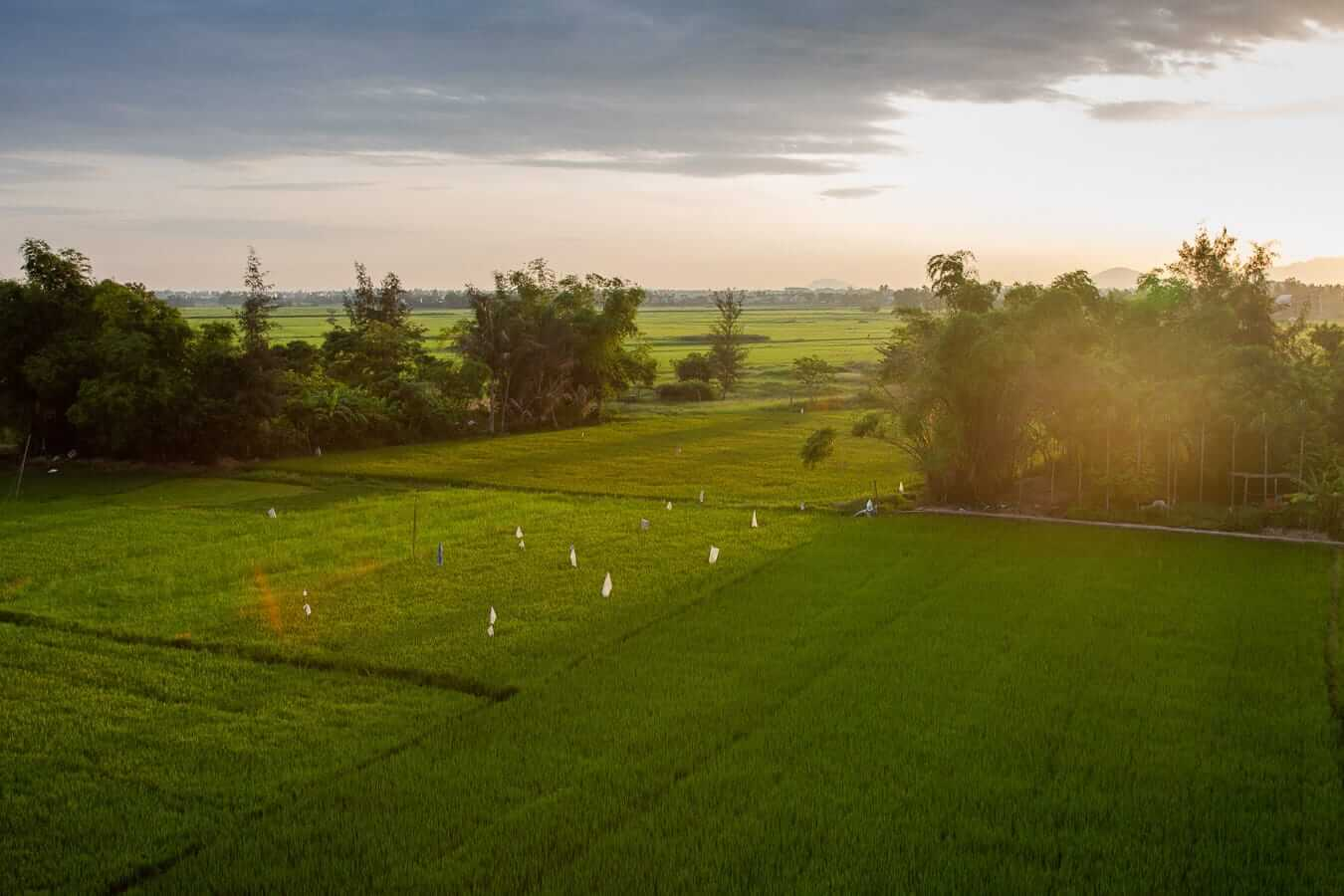 GreenLife Homestay: Where to stay in Hoi An